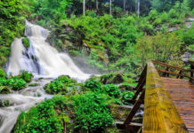 Experience the fascinating natural spectacle of the Triberg waterfalls during your holiday in the holiday home in the Black Forest and visit the highest waterfalls in Germany in the heart of the holiday region Middle Black Forest