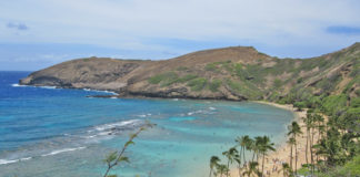 it is an extinct volcanic crater, with clear water and with THOUSANDS of fish, it is like being in the Aquarium