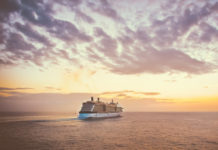 It is more than clear that one of the best ways to spend a vacation is aboard a fabulous cruise