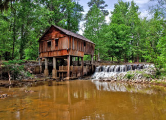 Rikard's Mill Historical Park is nestled in the piney woods along the banks of the picturesque Flat Creek
